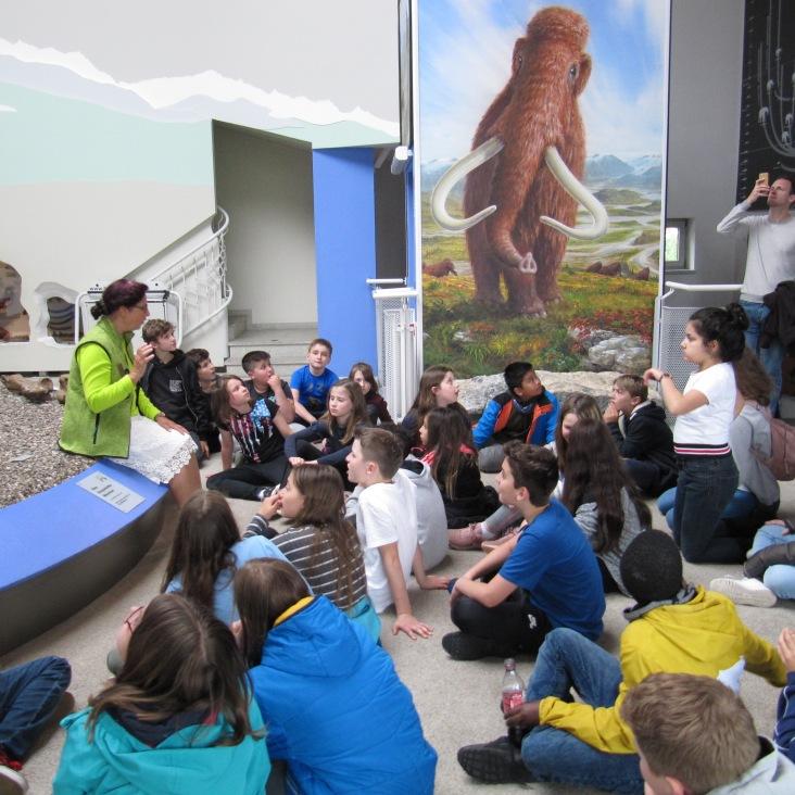14im mammutmuseum2 (1)
